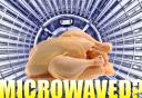 2008-05-30-microwaved-copy.jpg